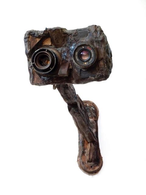 Gedachtenfotocamera (2016)