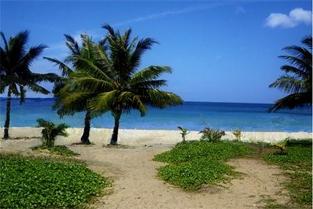 Paradise beach 7 (2014)