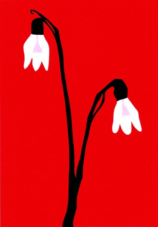 Sneeuwklokjes (2007)