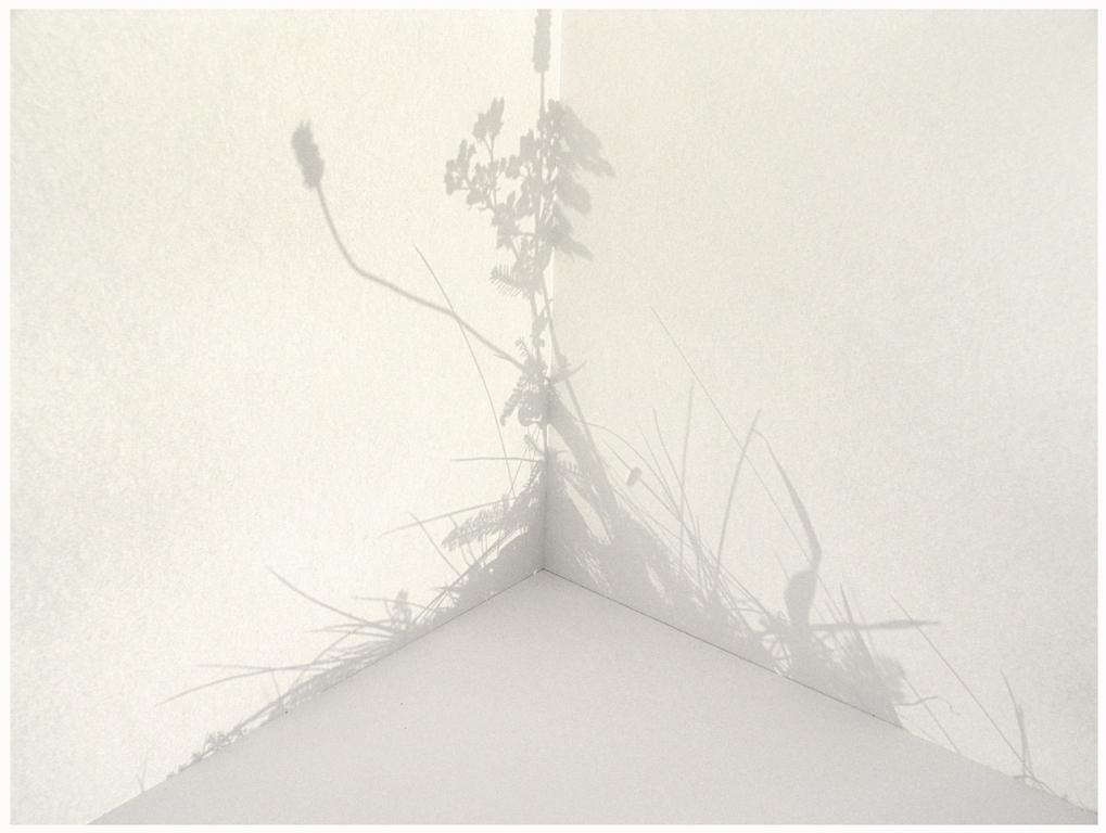 Corner silhouet 1/20 (2005)