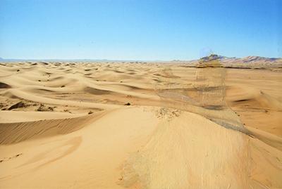 Desert Adventures 5 (2014)