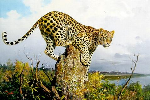 Leopard sitting on a Ant House